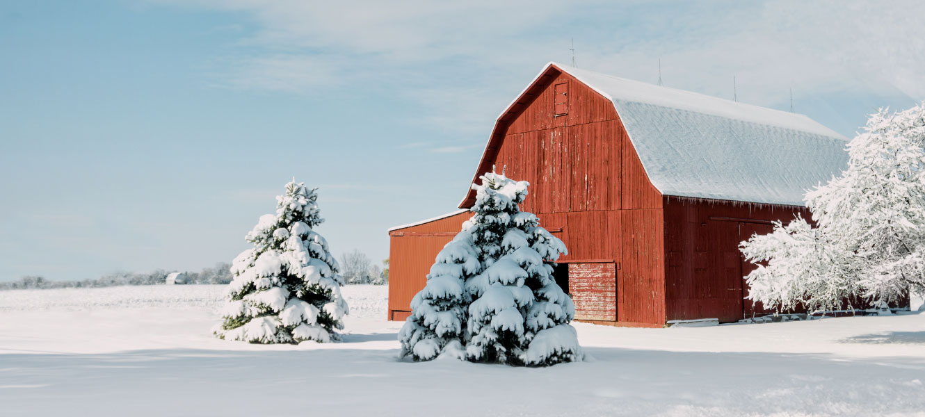 barn in the winter covered in snow